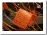 orange_cable